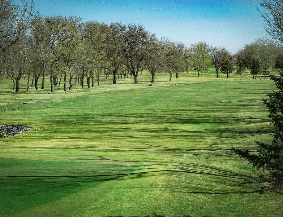 golf-fairway-18